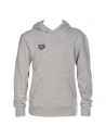Arena Hoodie Medium Grey Junior
